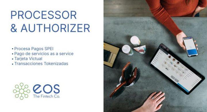 Processor & Authorizer